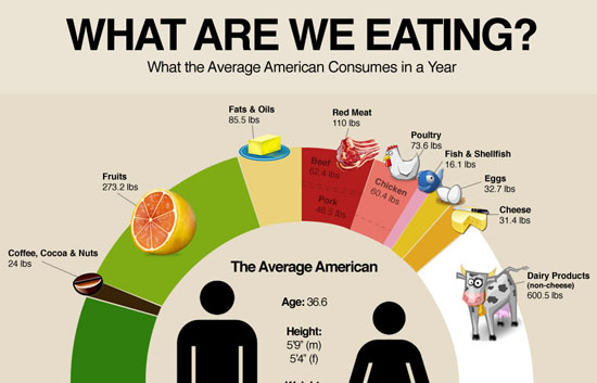Why Americans Are Fat 87