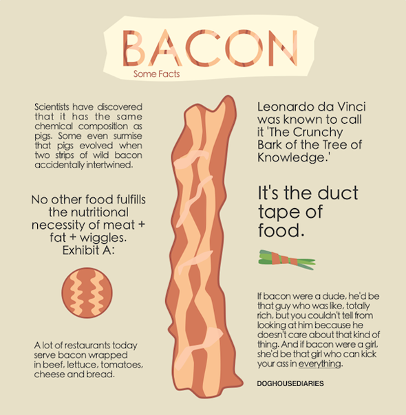bacon-everything