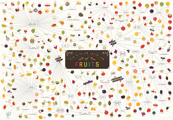 varieties-of-fruits-main