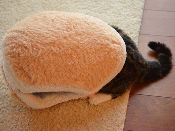 catburger-2