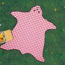 bear-skin-picnic-blanket