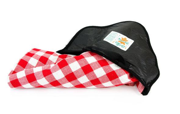 bear-skin-picnic-blanket-2