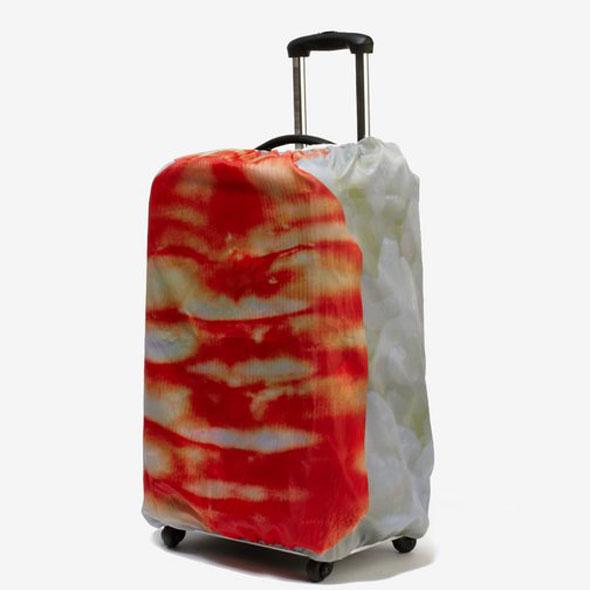 sushi-luggage-2