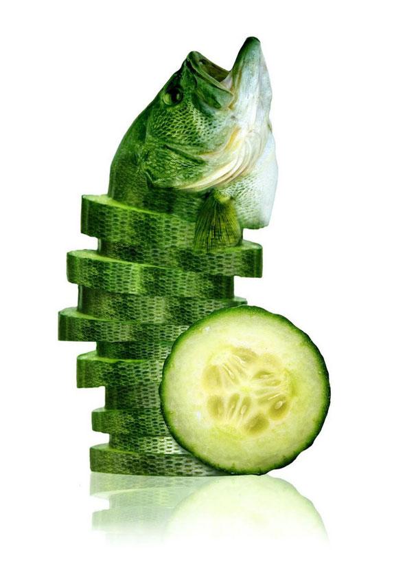 08-sea-cucumber