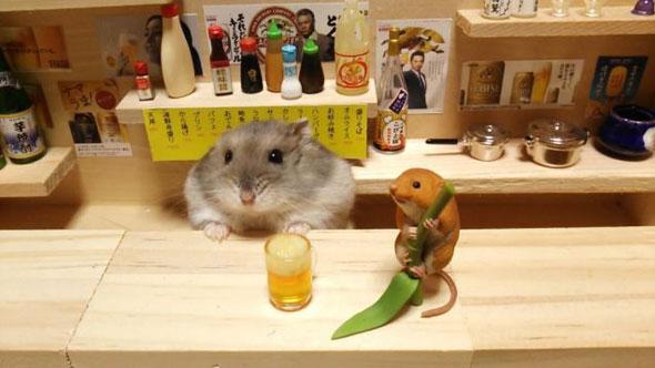 hamster-bartender-3