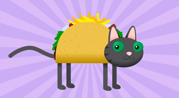 tacocat a music video about a taco cat and palindromes