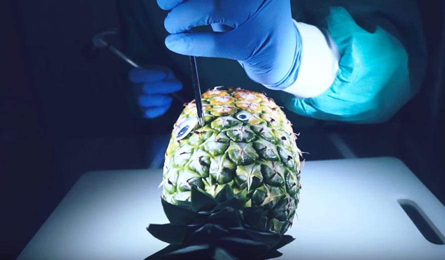 pineapple-lobotomy
